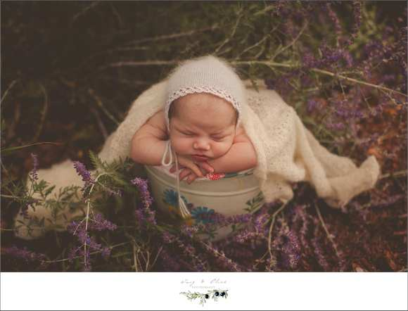 bonnets and blankets and purple flowers