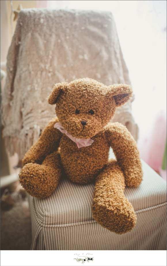 teddy bear in home newborn sessions