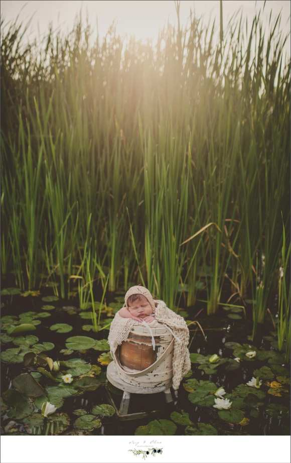 swamp grass and a baby