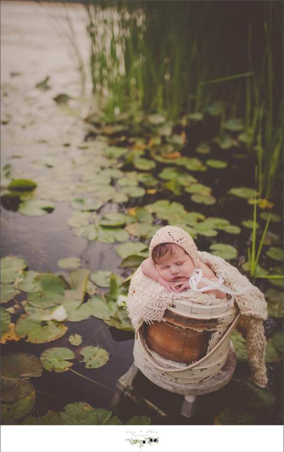 baby in a bucket in a marsh