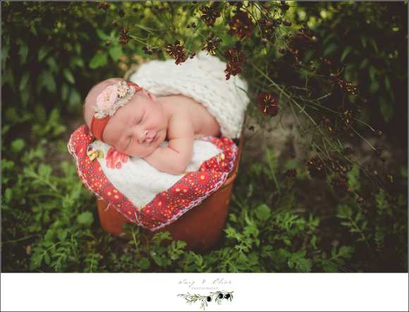 newborn photography workshops