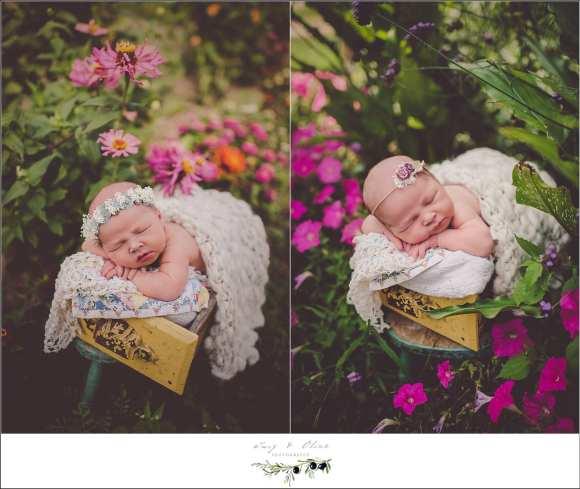 best newborn workshops