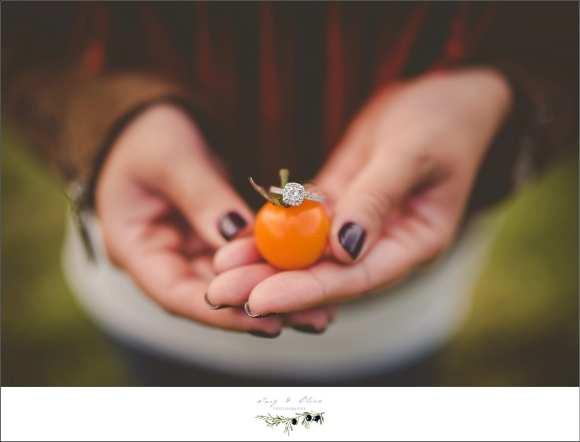 cherry tomato ring shot