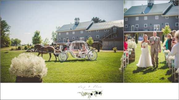 horse wedding entrance
