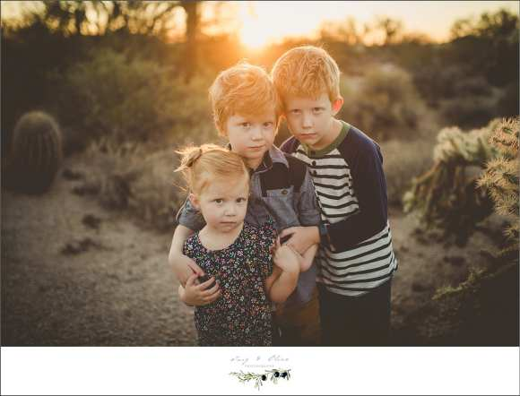 phoenix families