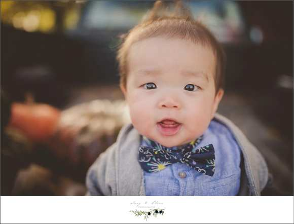 smiling happy baby with a bowtie