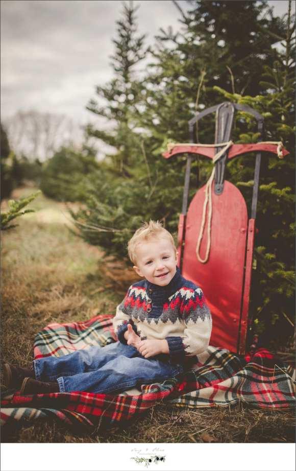 big kid sled