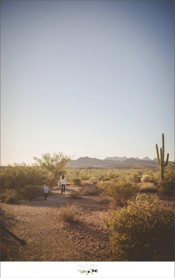 Arizona sky line