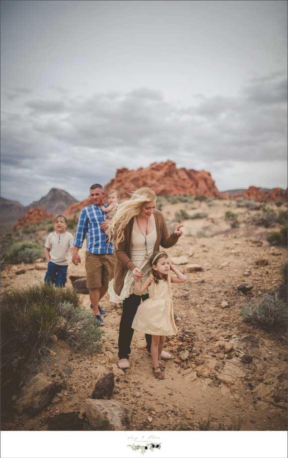 Nevada backdrop