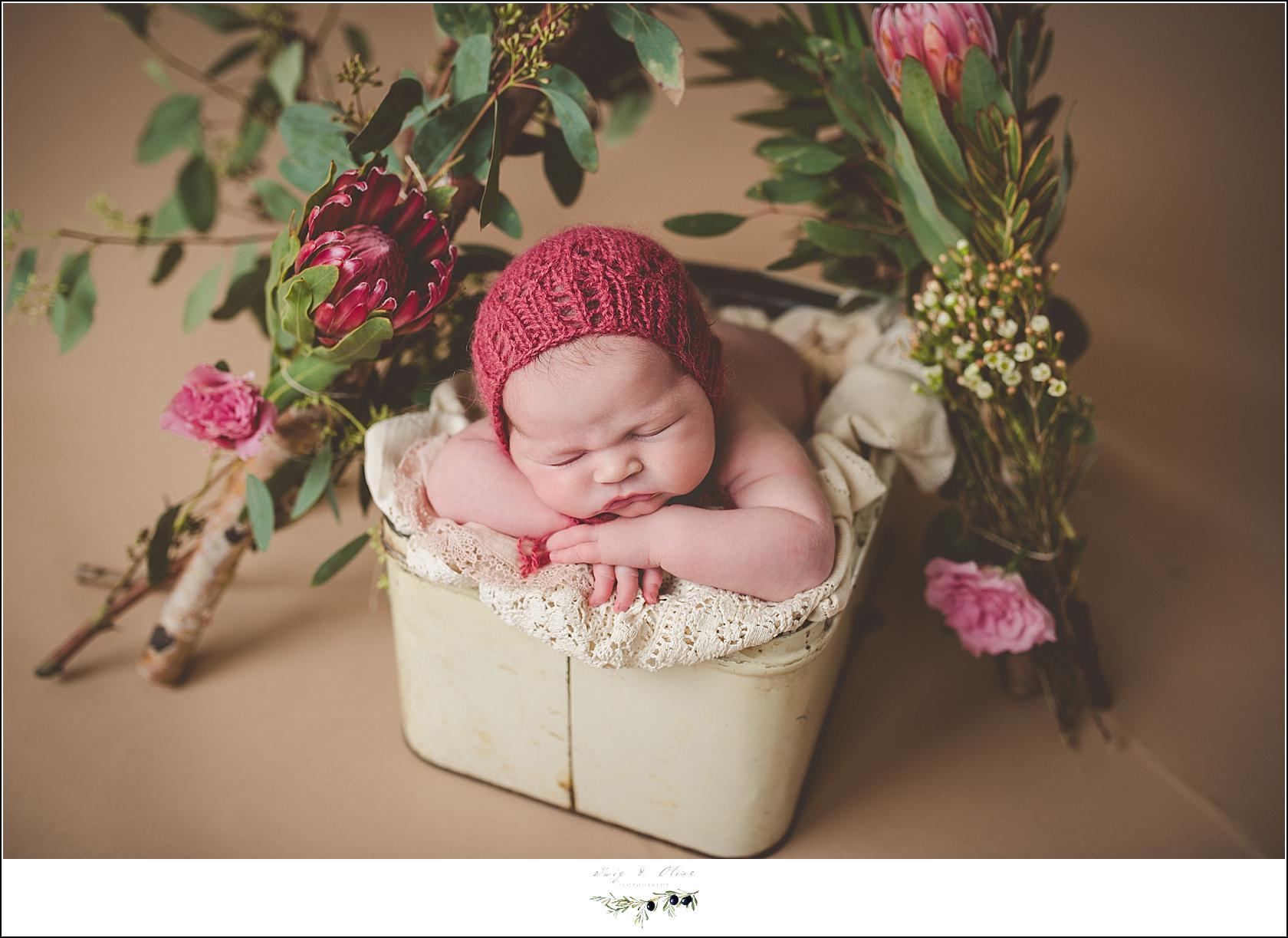 Madison newborn photographer