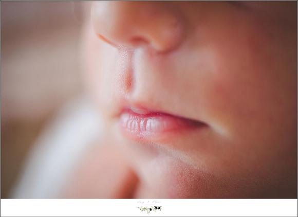 baby nose