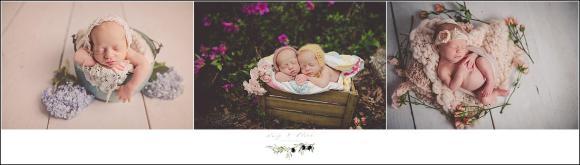 South Carolina twins