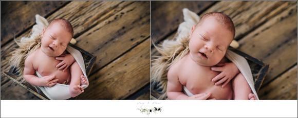 newborn on wood