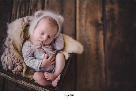 Sun Prairie Newborn Photography Session