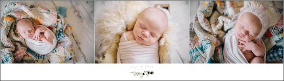 Newborn Photography Madison