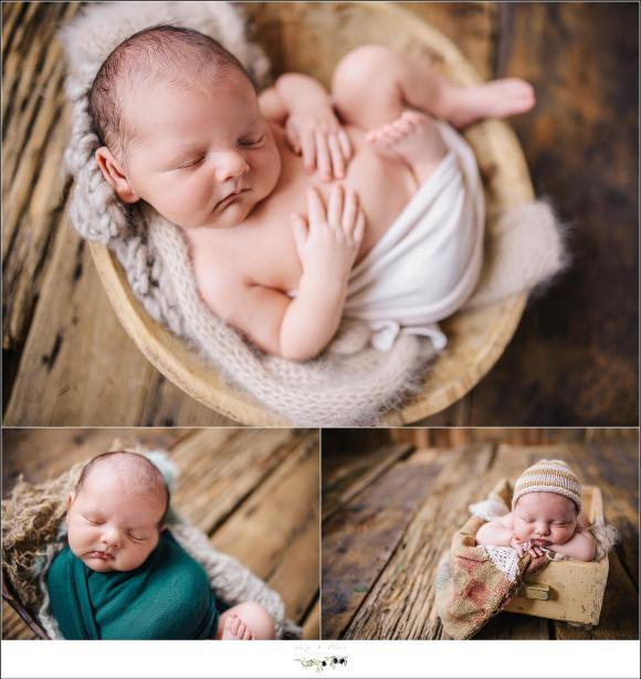 Newborn Photographer Sun Prairie Wisconsin