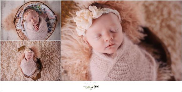 Newborn Photography Madison, WI