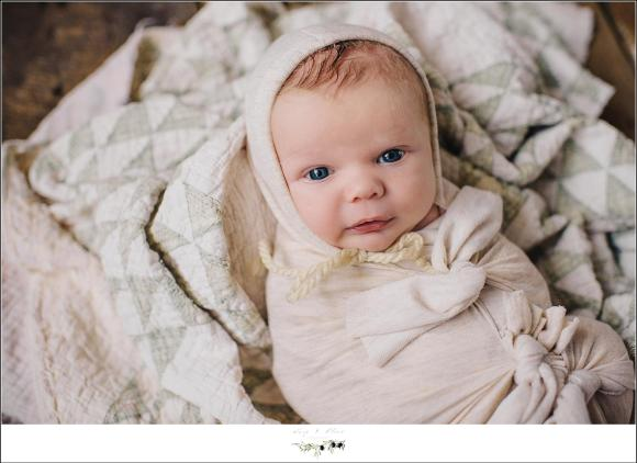 Sun Prairie WI Newborn Photography Session