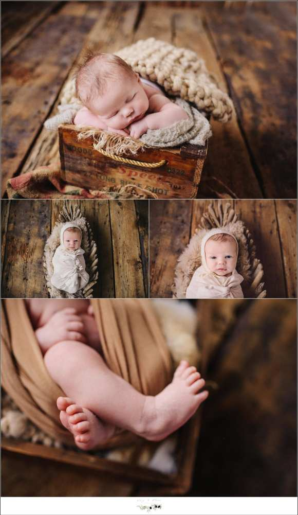 Baby Boy Photography