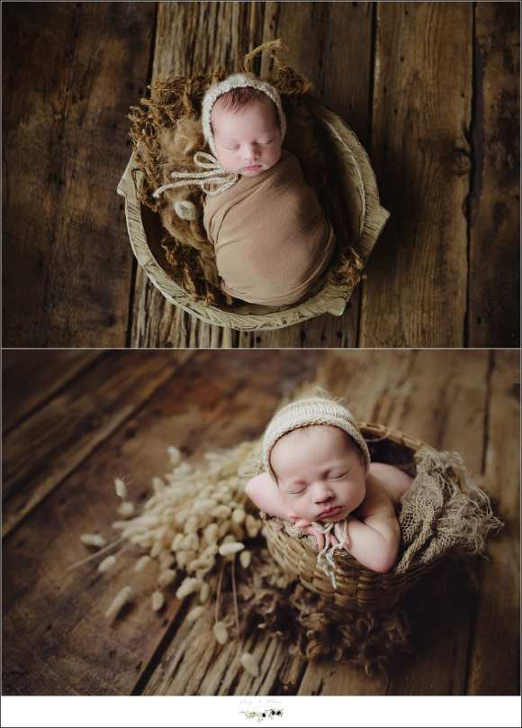 Madison WI Newborn Photography Session