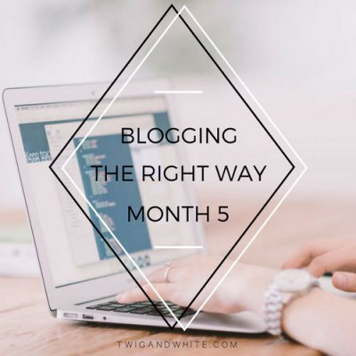 Blogging the Right Way – 5 Months