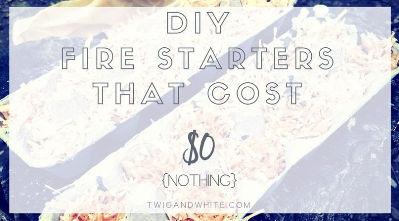 diy fire starters that cost nothing