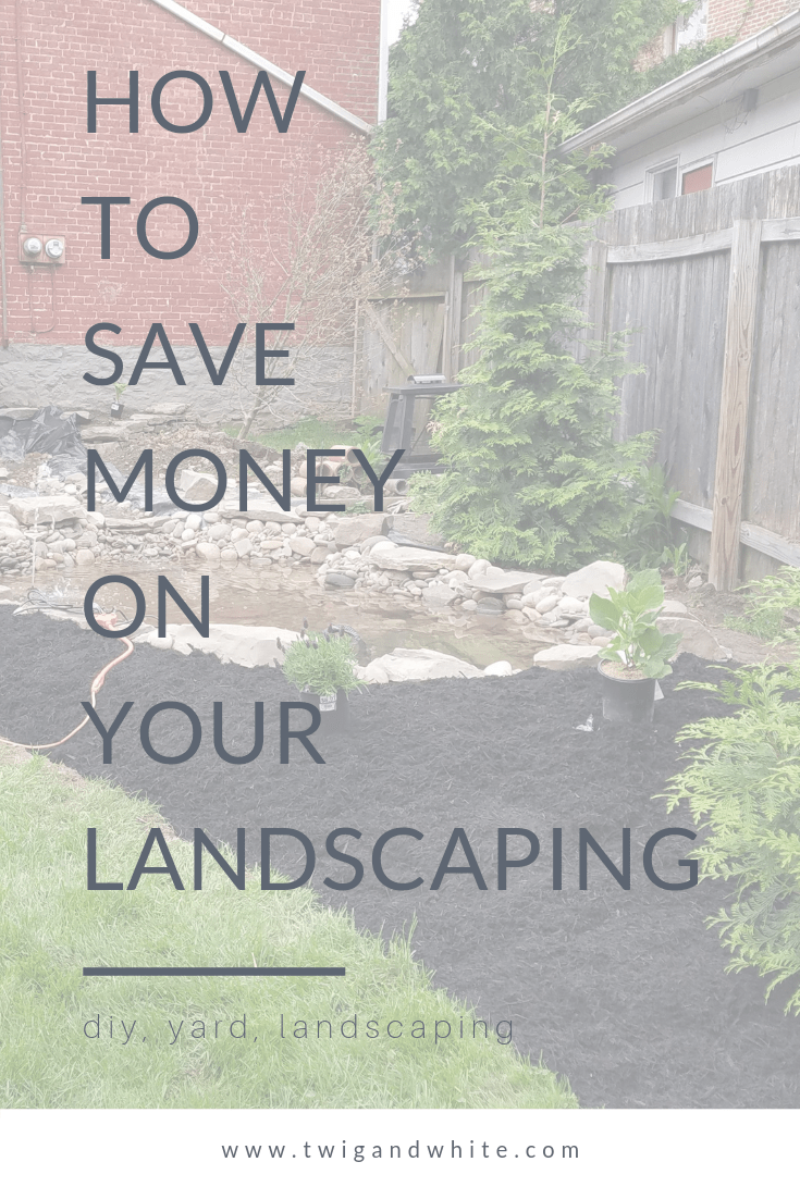 how to save money on your landscaping