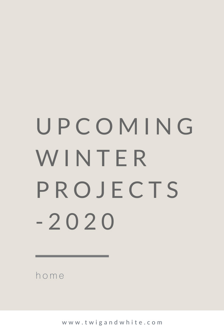 upcoming-winter-projects-2020