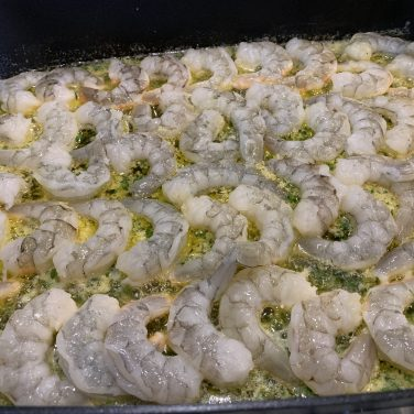 Single-layer the shrimp