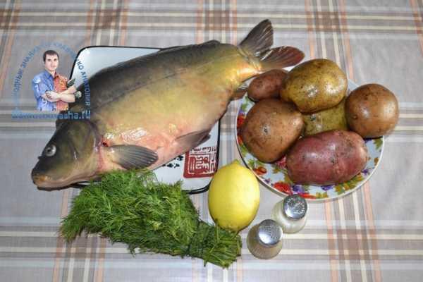 Карп с картошкой в духовке рецепт с фото – Карп запечённый ...