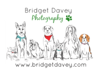 Bridget Davey