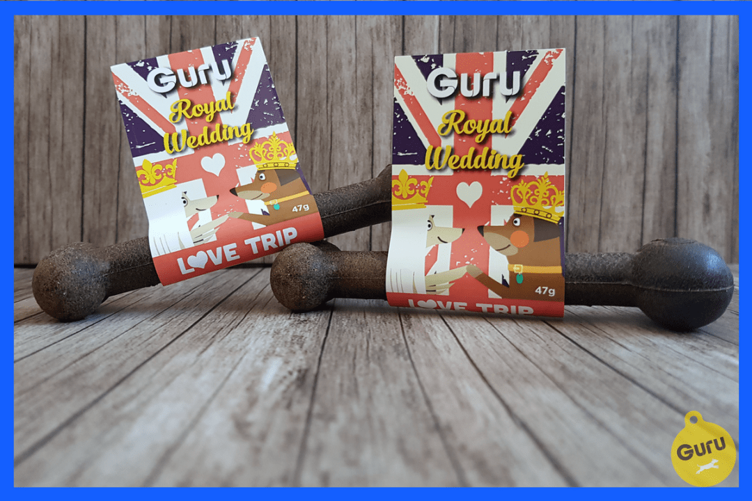 Click for inspiration for 5 dog products for The Royal Wedding! Check out our product reviews of some of the best