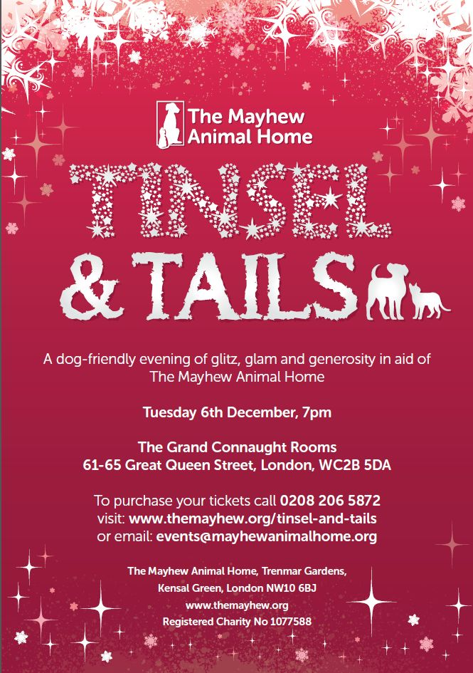 tinsel-and-tails-flyer