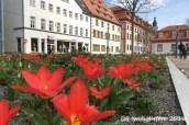 Ev.Hirschgarten - Blick zur Staatskanzlei