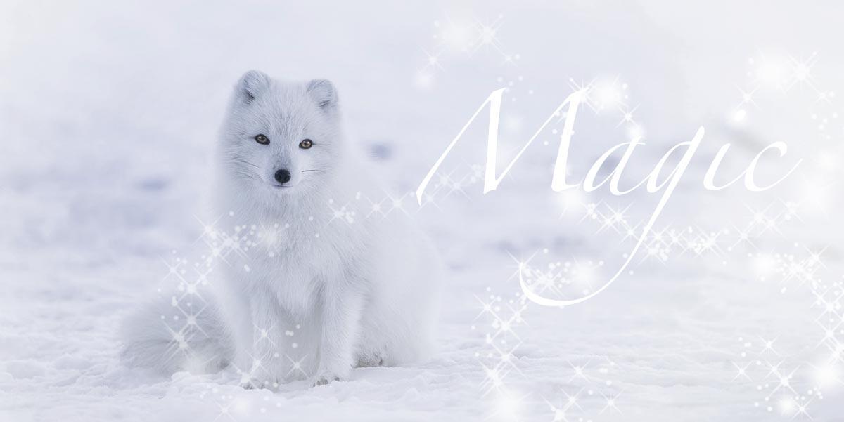 iceland-pixabay-beautiful