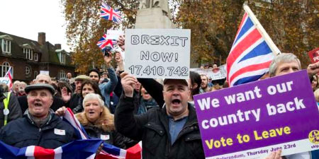 brexiteer protest