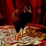 Chicks Get Money