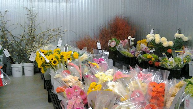 Market Flowers always keeps plenty of fresh flowers in the walk-in cooler.