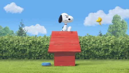Snoopy is Not Impressed with the Frame-Rate.