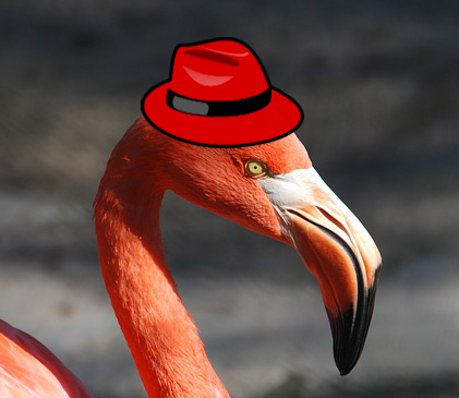 A flamingo in a hat