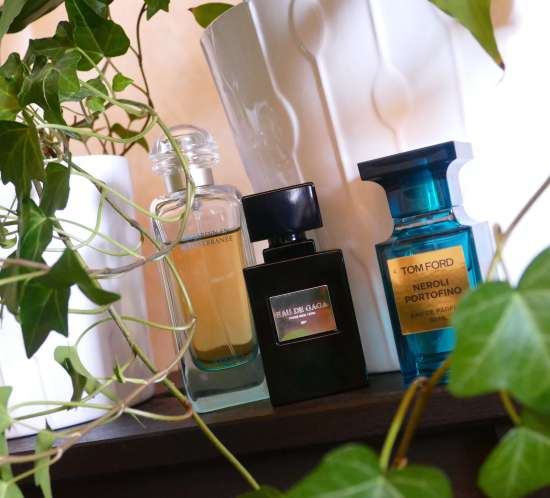 transition fragrances