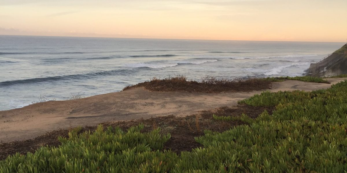 Surf and Coffee:  Encinitas California