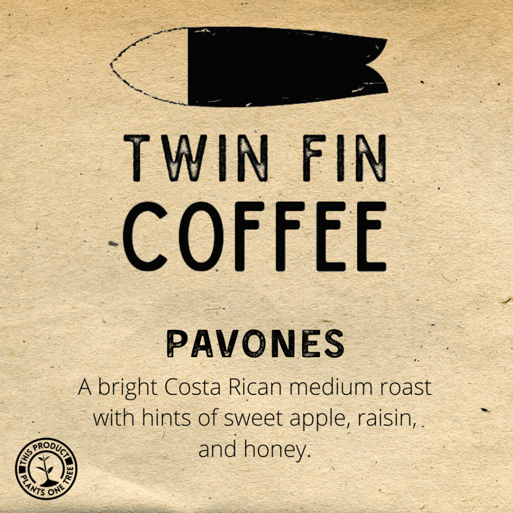 Twin Fin Coffee Pavones