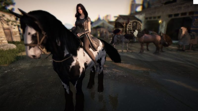 Black Desert Online: How to Get a Horse by Taming, Breeding