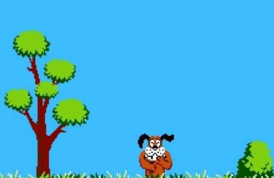 Dog - Duck Hunt