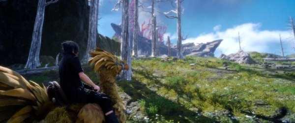 Final Fantasy XV, Chocobo