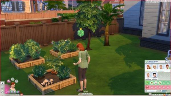 mts_manxcat-1646878-gardenclubgathering