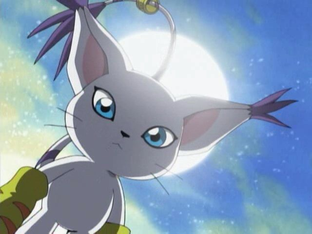 Gatomon All Original Digimon Ranked