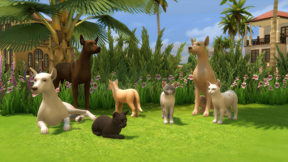 Sims 4 Mods