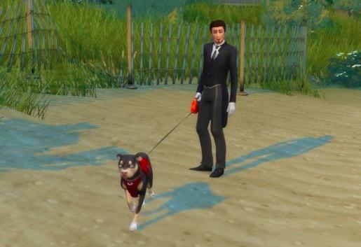 walk dog mod sims 4